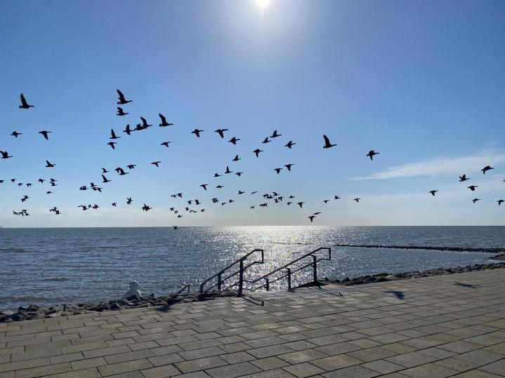 Abgang zum Meer und Watt